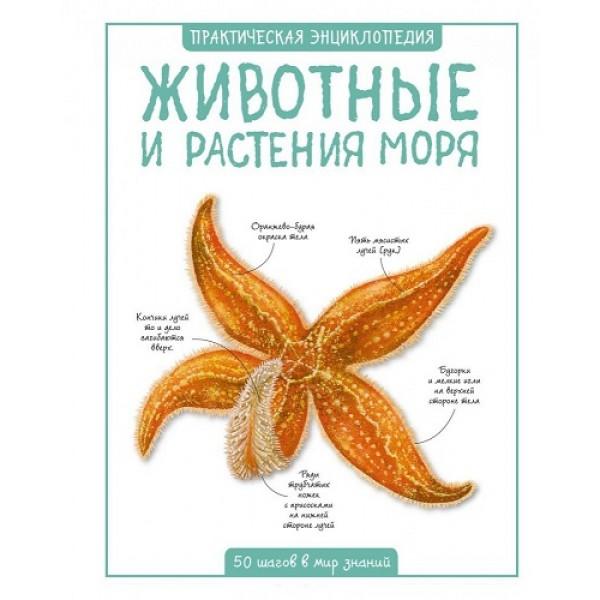 Животные и растения моря / Практическая энциклопедия