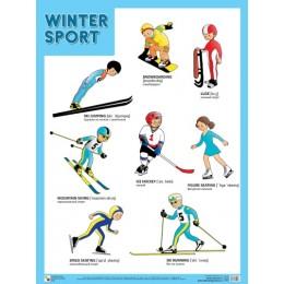 Winter Sport = Зимние виды спорта / Плакат