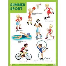 Summer Sport = Летние виды спорта / Плакат