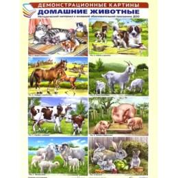 Домашние животные. Методический материал к основной образовательной программе ДОО