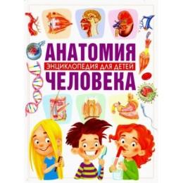 Анатомия человека. Энциклопедия для детей