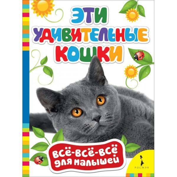 Эти удивительные кошки (рос)
