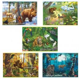 Альбом для рисования, А4, 20 листов, скоба, обложка картон, HATBER, 205х290 мм, В сказочном лесу (5 видов), 20А4В