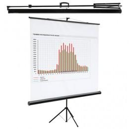 Экран проекционный DIGIS KONTUR-C, матовый, на треноге, 200х200 см, 1:1, DSKC-1103