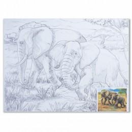 Холст на картоне с контуром BRAUBERG ART CLASSIC, Слоны, 30х40 см, грунтованный, 100% хлопок, 190631