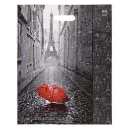 Пакет с вырубной ручкой ПВД, 45х38 см, Мой Париж, 60 мкм, н00084575