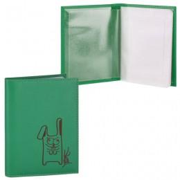 Бумажник водителя FABULA Friends, натуральная кожа, тиснение, 6 пластиковых карманов, лайм, BV.56.CH