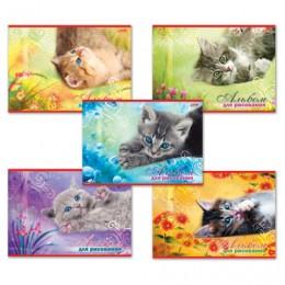 Альбом для рисования, А4, 20 листов, обложка картон, HATBER, 205х290 мм, Котята, 20А4В, A17357