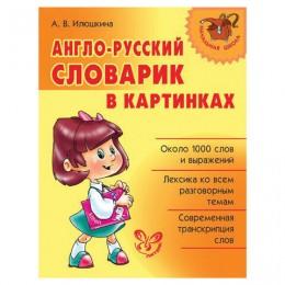 Англо-русский словарик в картинках, Илюшкина А.В., 21459