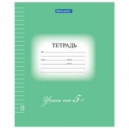Тетрадь 12 л. BRAUBERG ЭКО 5-КА, линия, обложка плотная мелованная бумага, ЗЕЛЕНАЯ, 104763