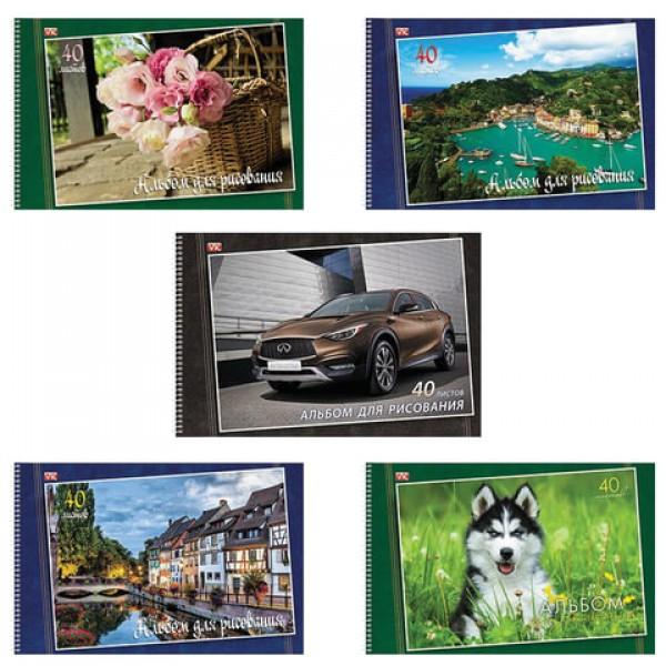 Альбом для рисования, А4, 40 листов, спираль, обложка картон, HATBER VK, 205х300 мм,