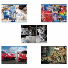 Альбом д/рис. А4 48л., скоба, обложка картон, HATBER, 205х290мм, Ассорти, 48А4В