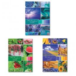 Тетрадь А4 96л. HATBER скоба, клетка, обложка картон, Разноцветный мир (3 вида), 96Т4В3