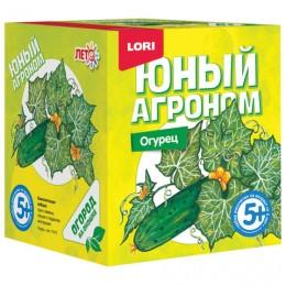 Набор для выращивания растений ЮНЫЙ АГРОНОМ Огурец, горшок, грунт, семена, LORI, Р-011