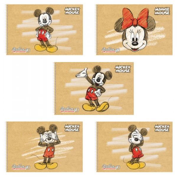 Альбом для рисования, А4, 40 листов, спираль, обложка картон, HATBER, 205х300 мм,