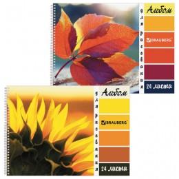 Альбом для рисования А4 24 листа, гребень, обложка картон, BRAUBERG ЭКО, 205х290 мм, Макро (2 вида), 105062