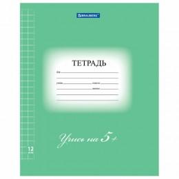 Тетрадь 12 л. BRAUBERG ЭКО 5-КА, крупная клетка, обложка плотная мелованная бумага, ЗЕЛЕНАЯ, 104761