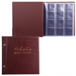 Альбом для монет и купюр на винтах универсальный, 224х224 мм, на 216 монет до D - 45 мм, выдвижные карманы, коричневый, ДПС, 2855-204