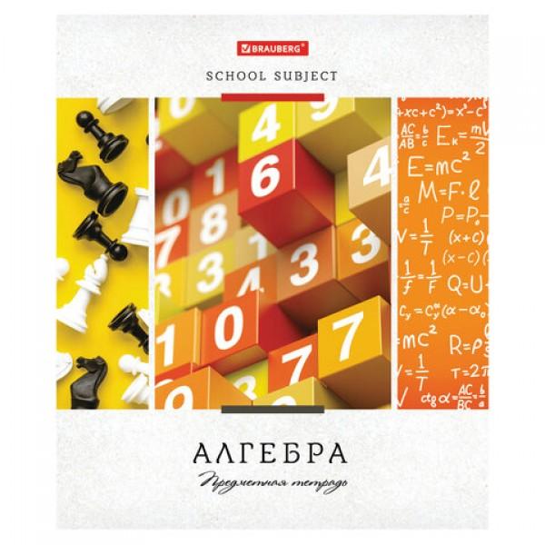 Тетрадь предметная УЧЕНЬЕ СВЕТ 48 листов, обложка картон, АЛГЕБРА, клетка, подсказ, BRAUBERG ЭКО, 403526